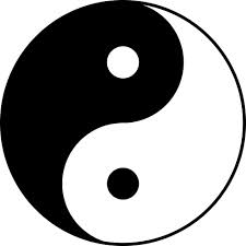 yin yang evolution